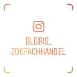 instagram_blori_berlin