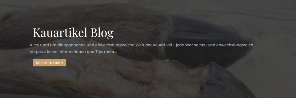 Blog für Hunde Kauartikel